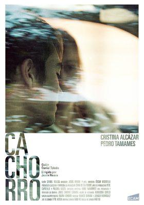 CARTEL-CACHORRO_web-800px